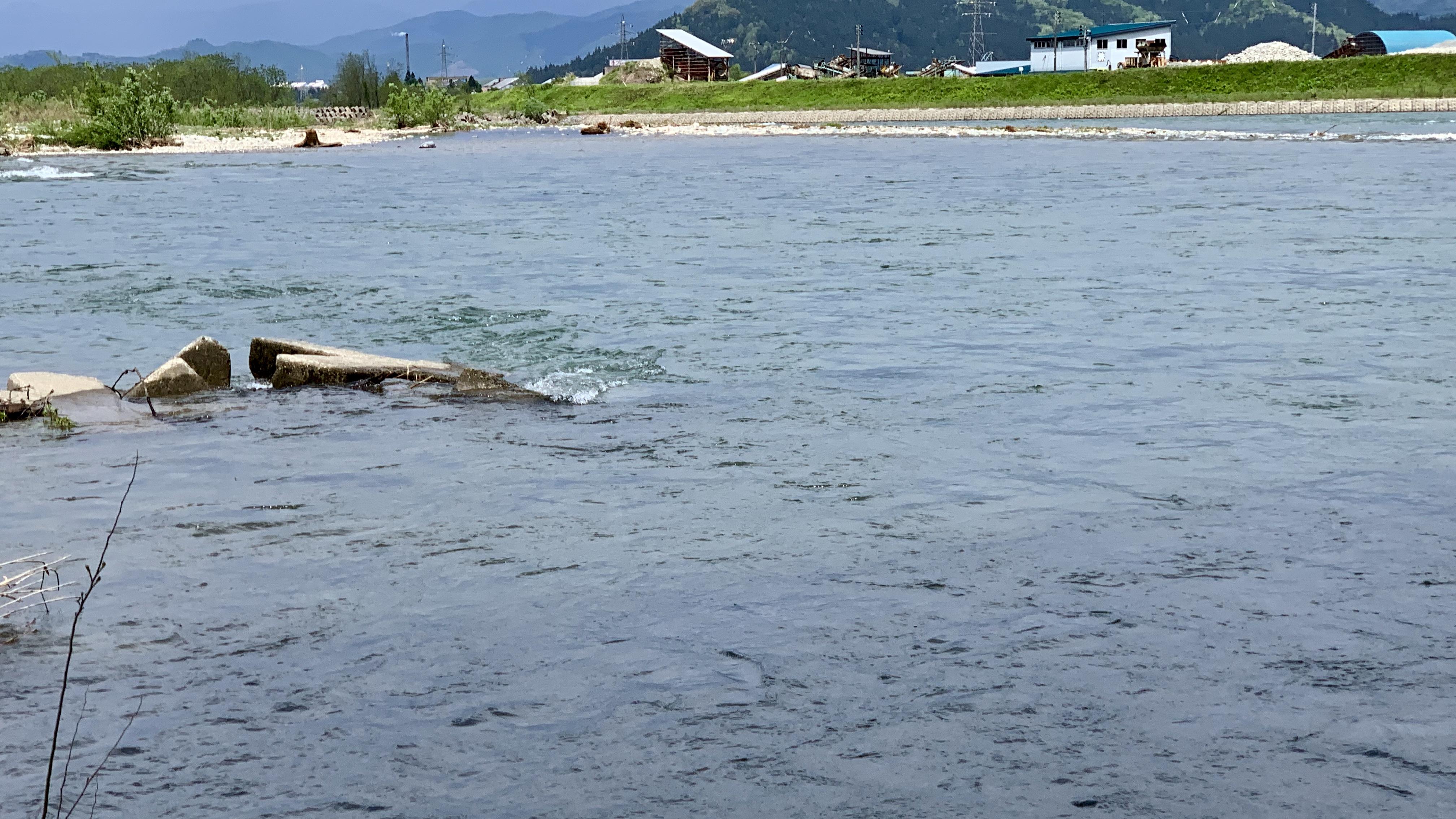 ヒットポイント魚野川