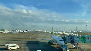 北海道の翼、Air do