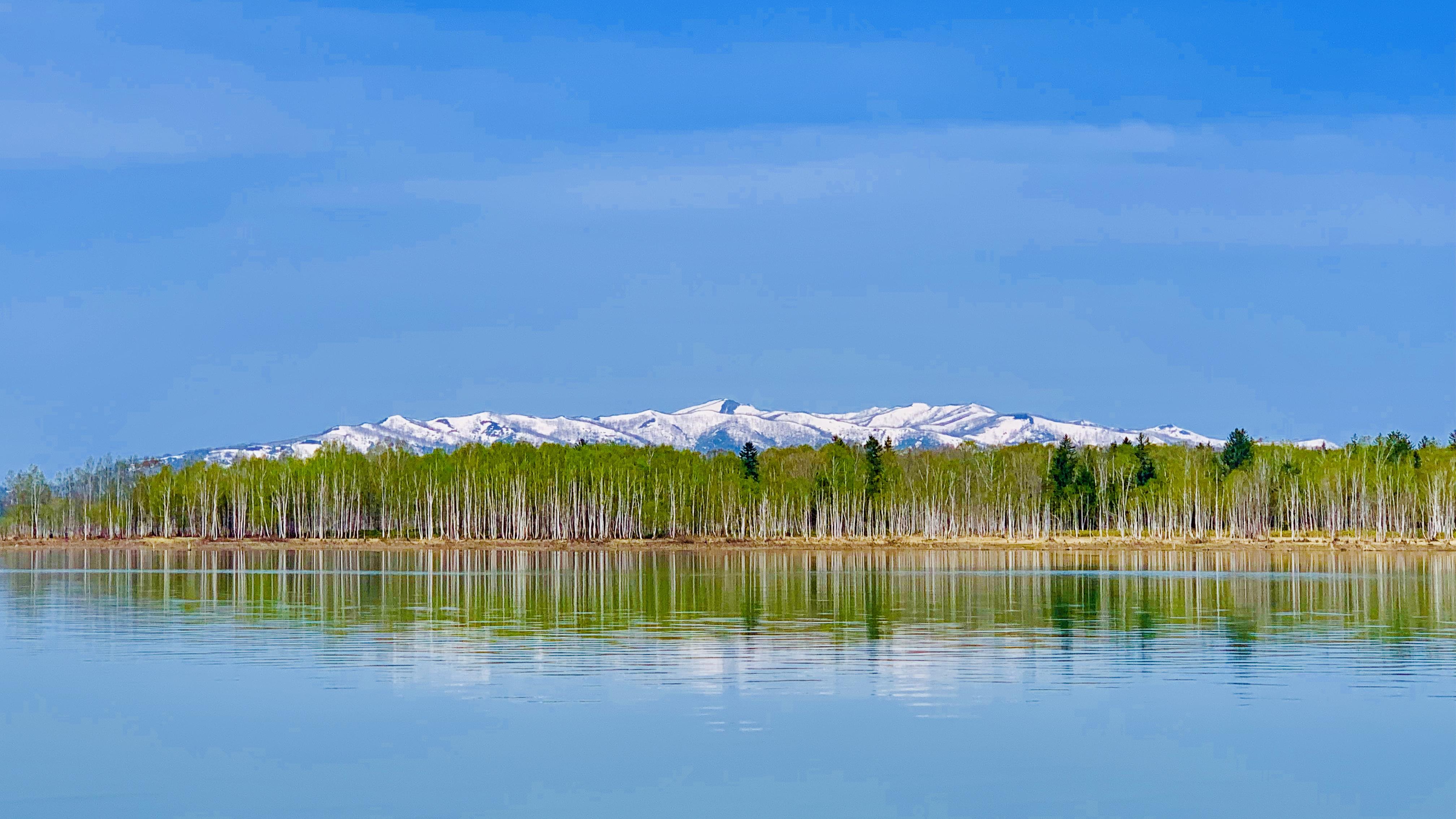 朱鞠内湖の春