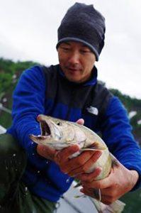 銀山湖イワナ2015