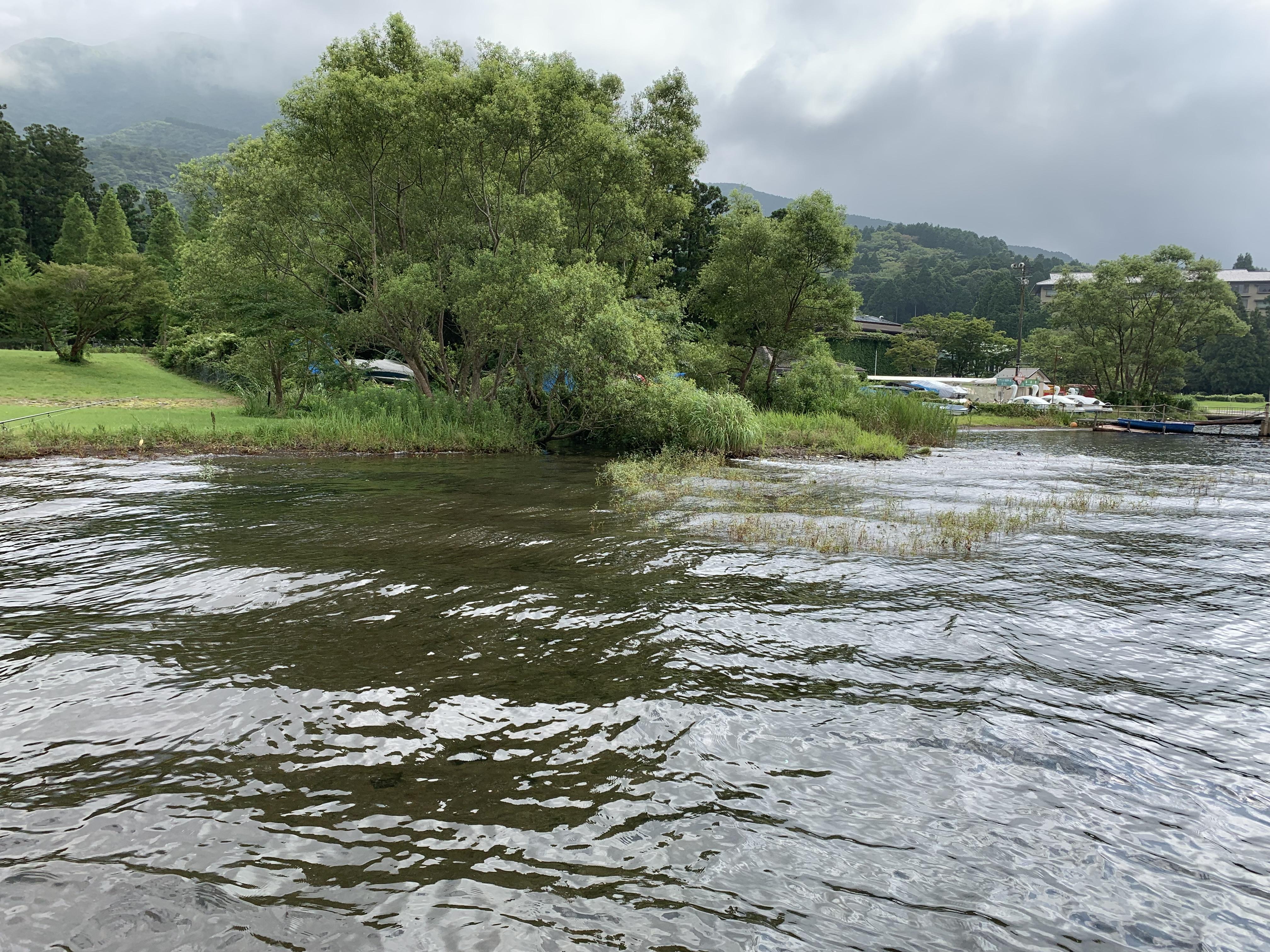 芦ノ湖の流れ込み