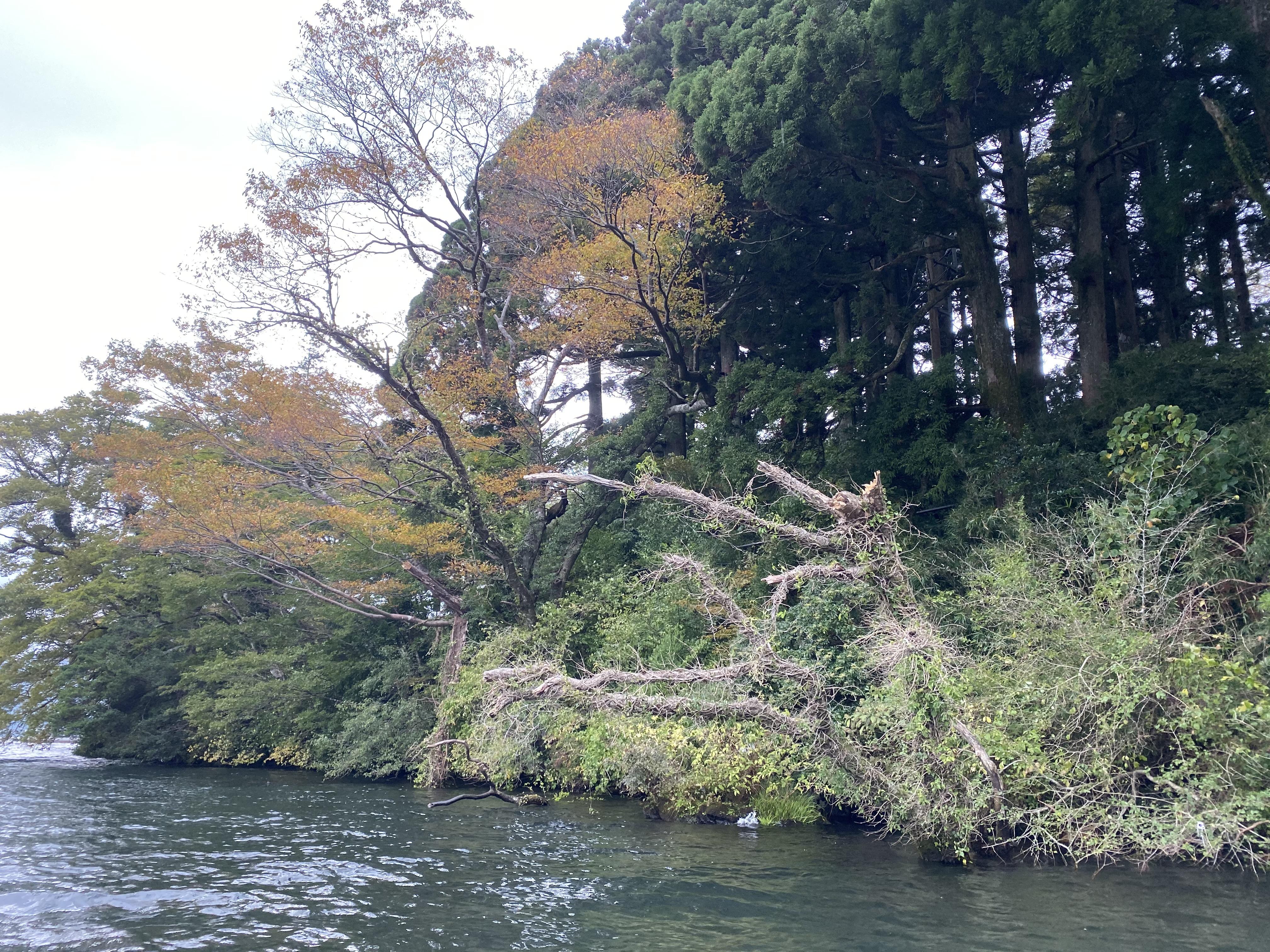 芦ノ湖ポイント