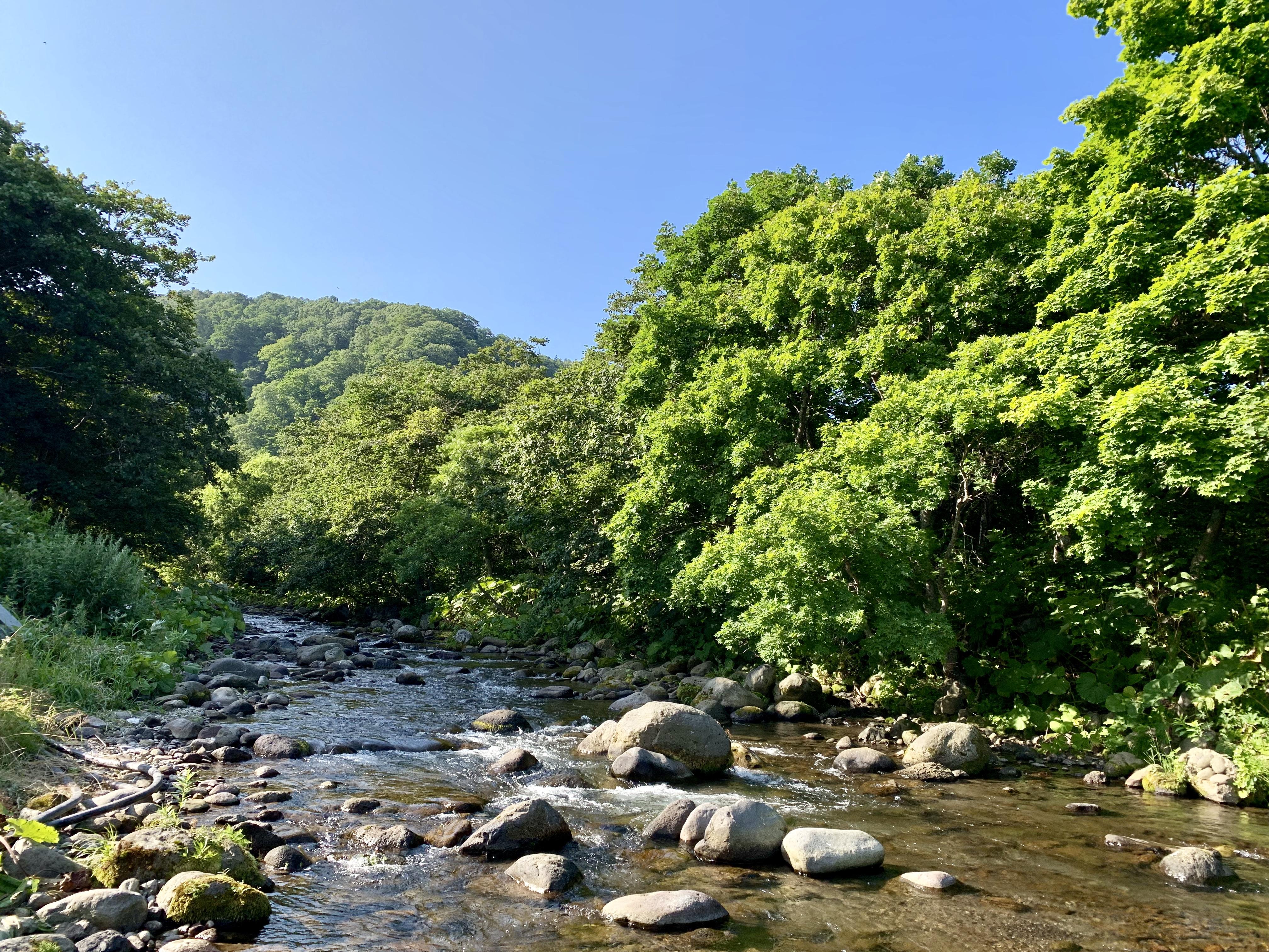 知床の小河川