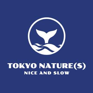 芦ノ湖どうでしょう