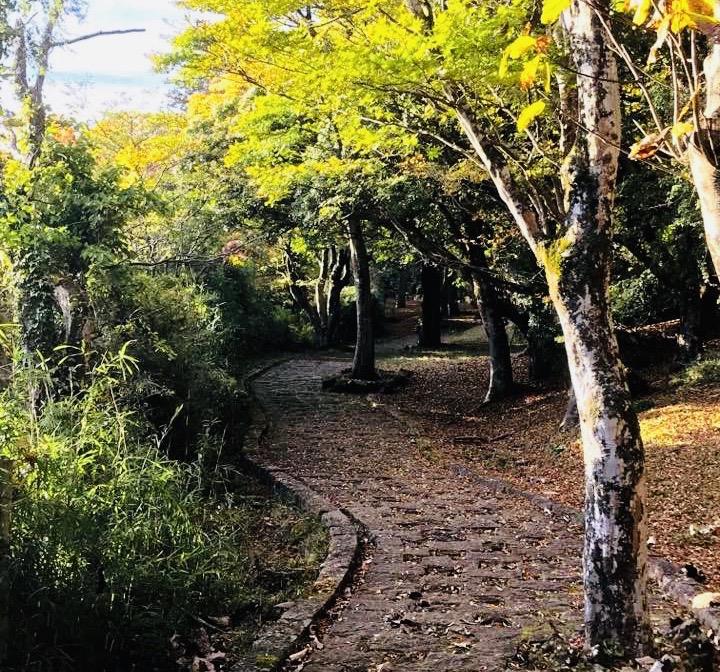 芦ノ湖の秋