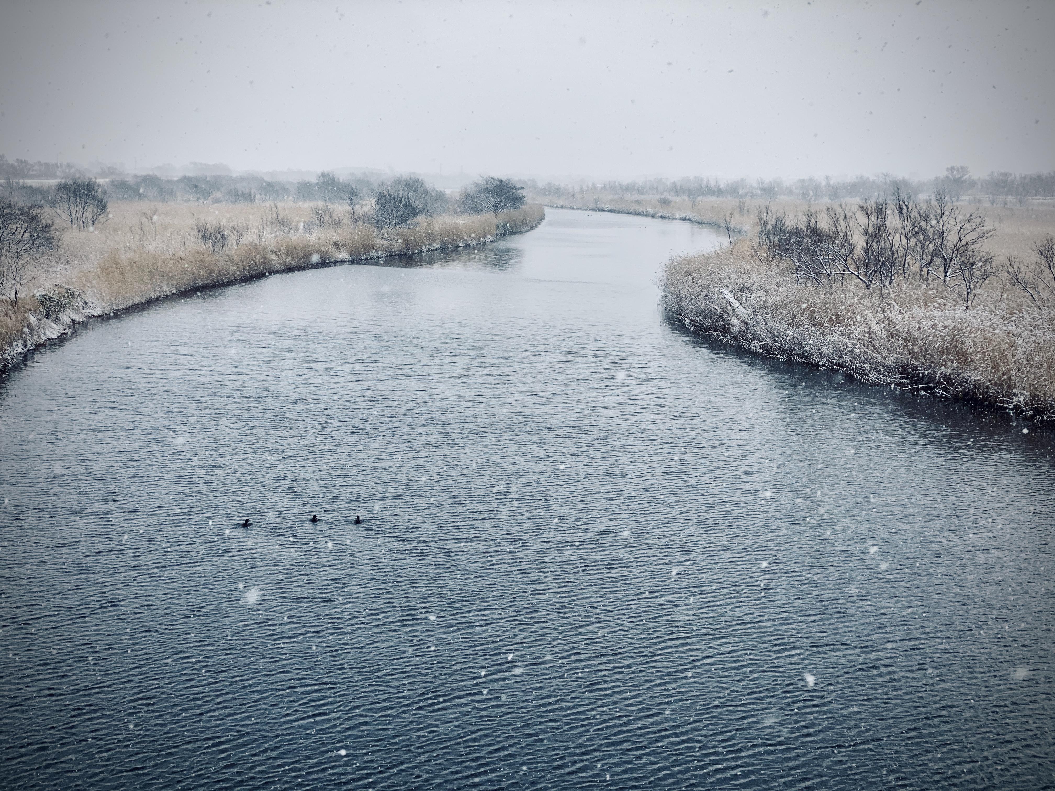 雪の猿払川