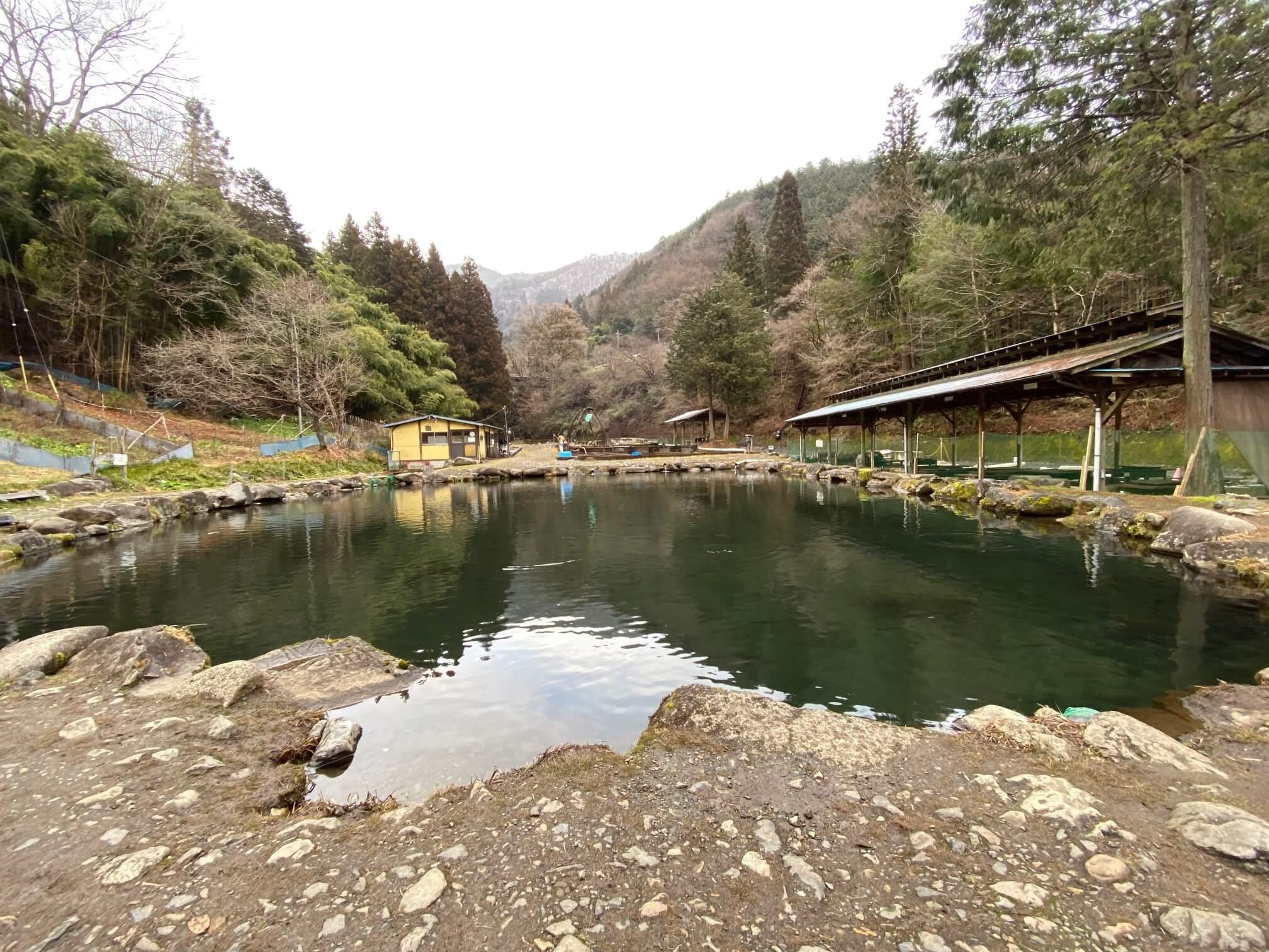 奈良子の池