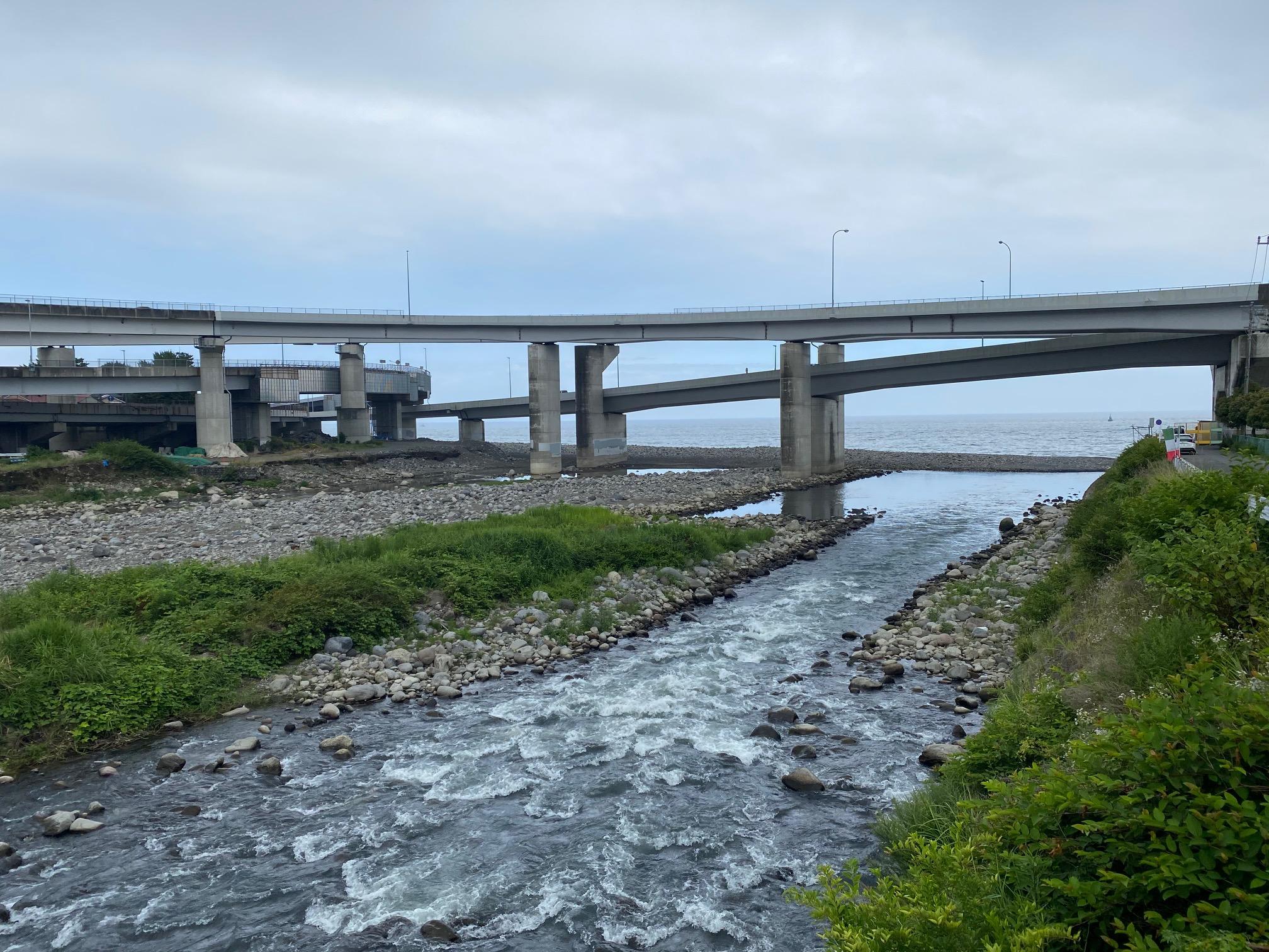 早川の河口