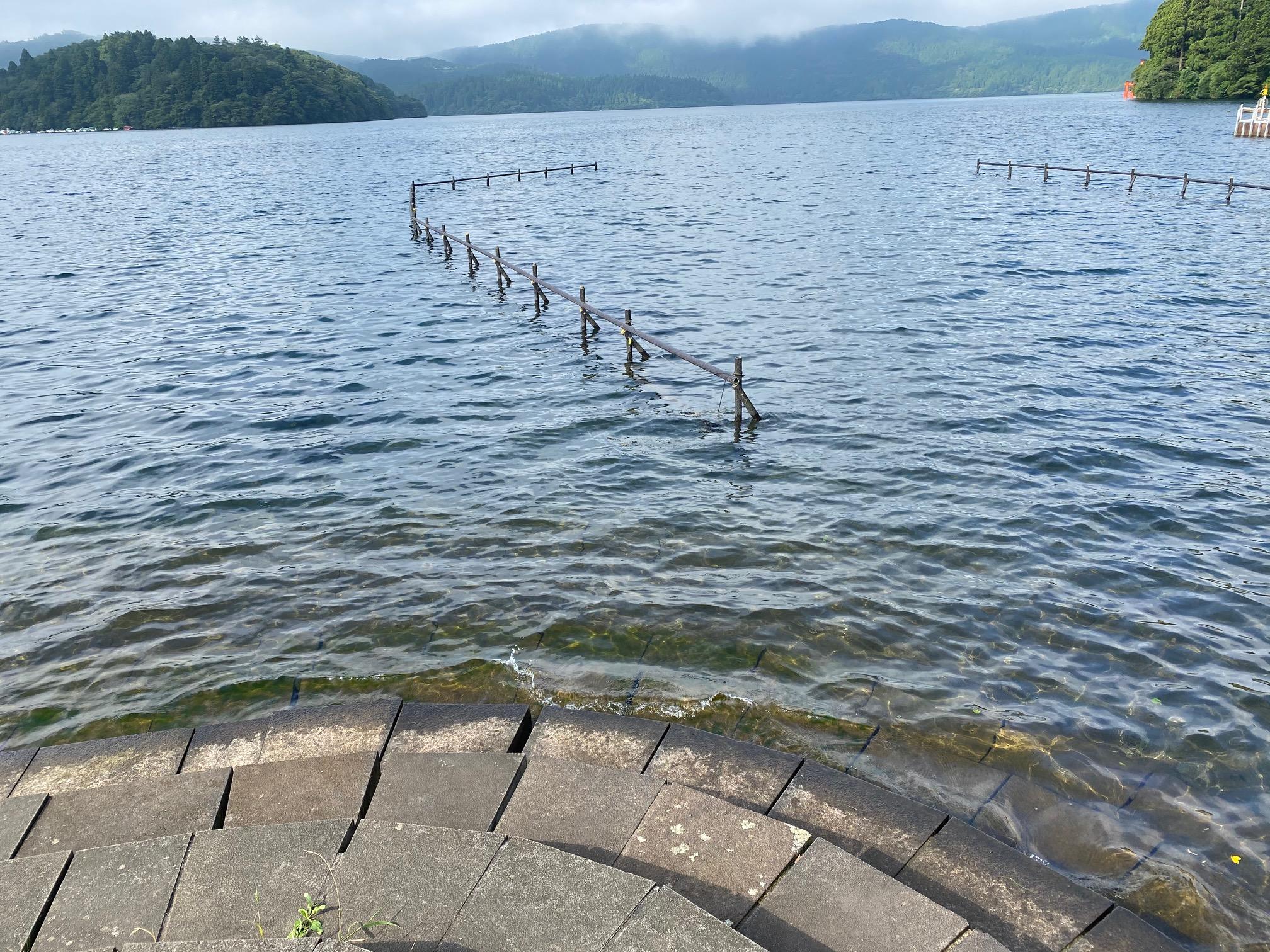 元箱根の河口も釣れる