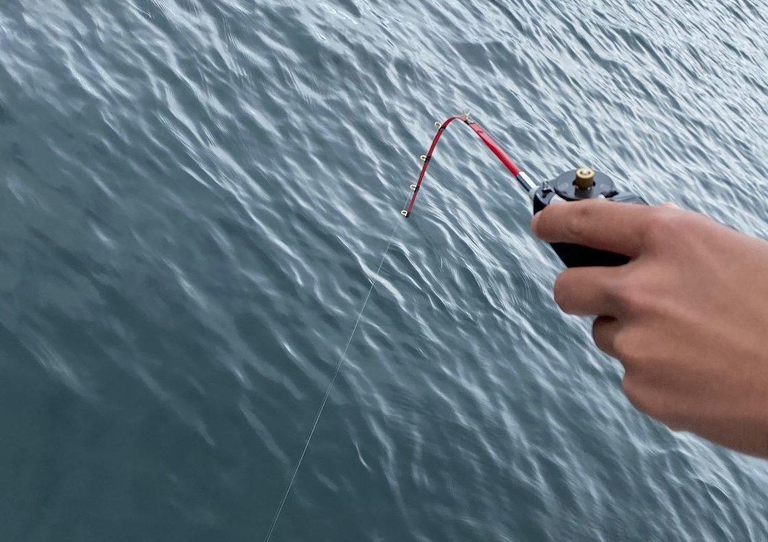ワカサギ釣りの竿は柔らかい