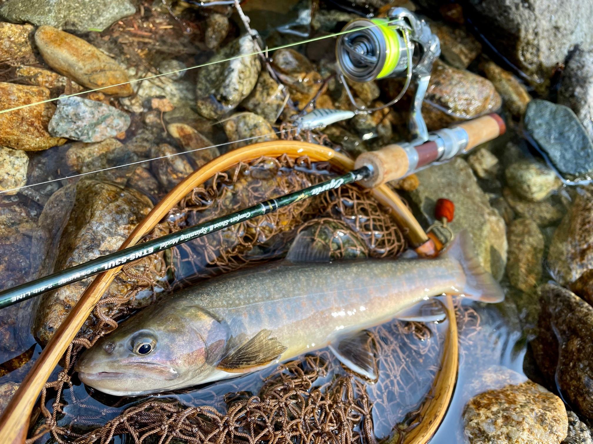 源流のイワナ釣りは短いタックルで