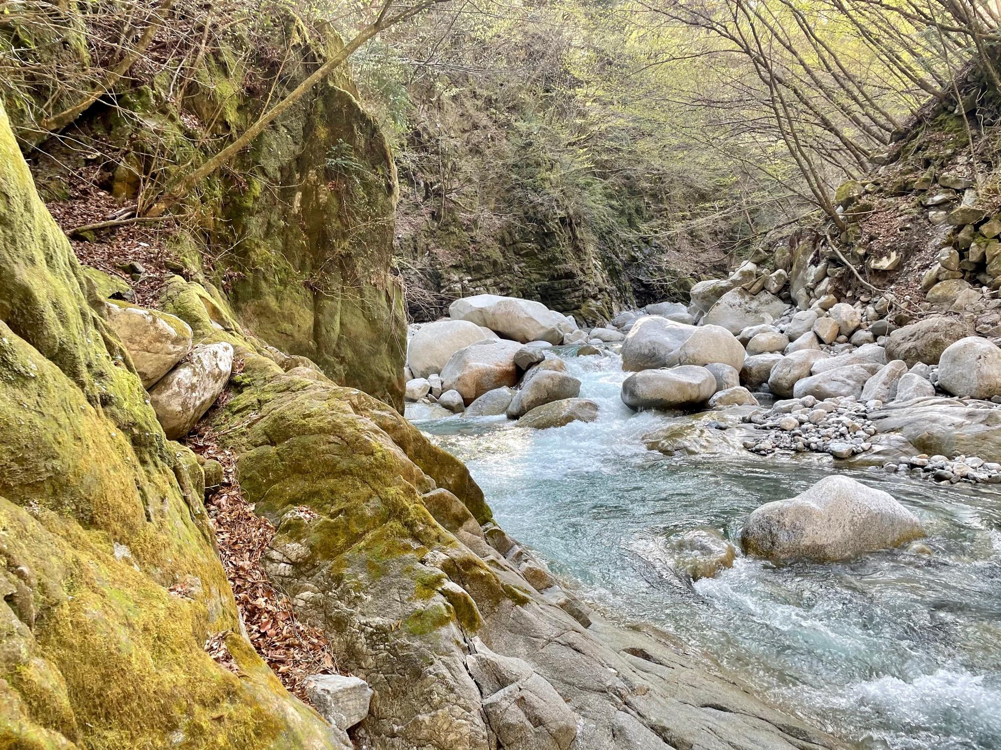 イワナの川
