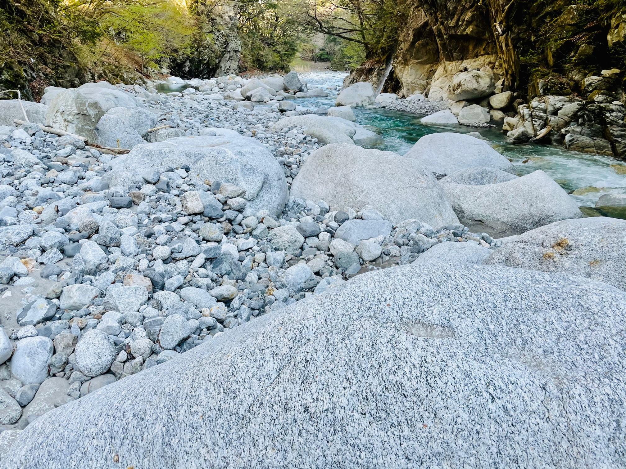 中央アルプスの花崗岩の川にヤマトイワナが住む