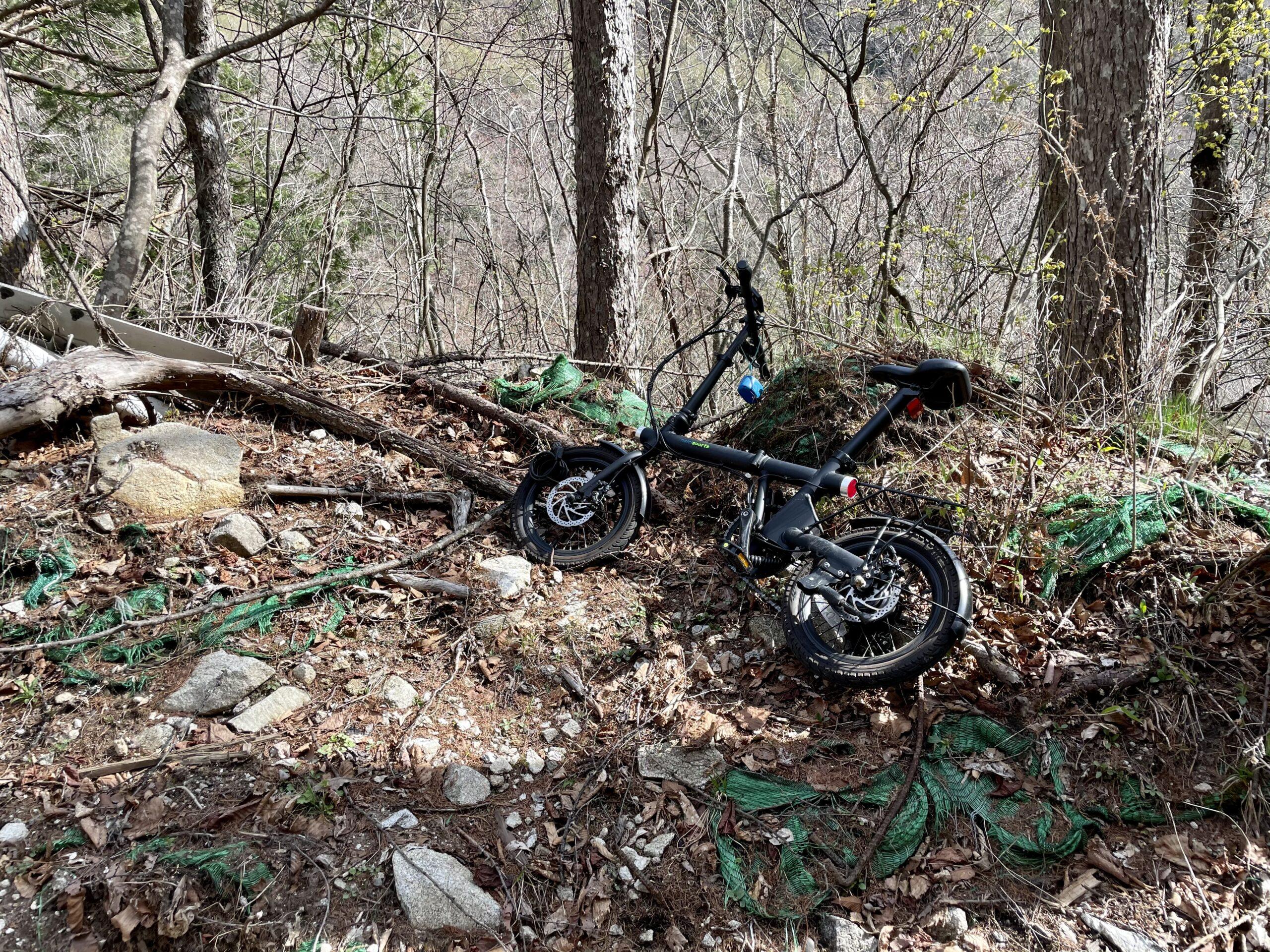 自転車を待機させて林道を歩く