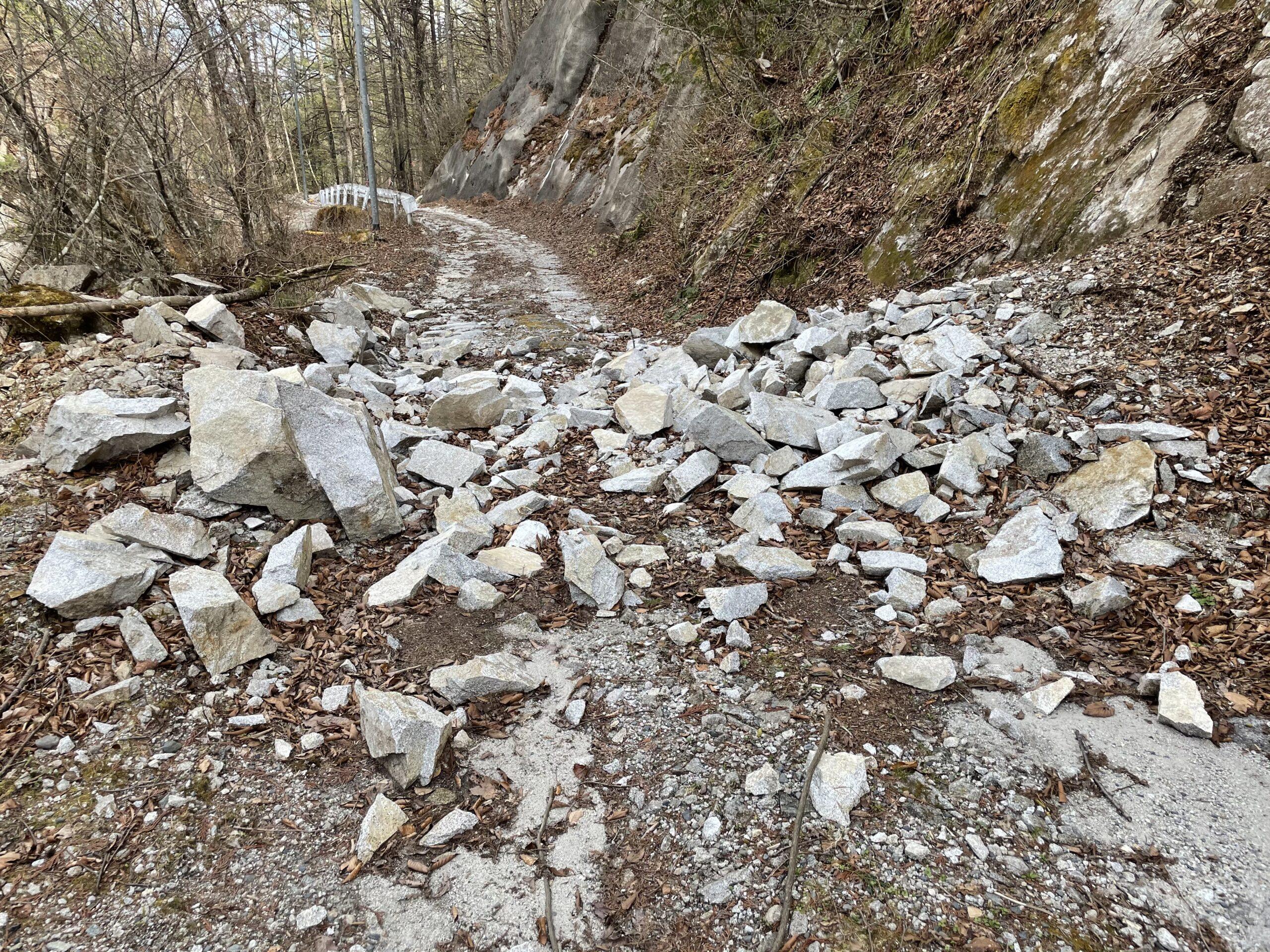 落石の林道