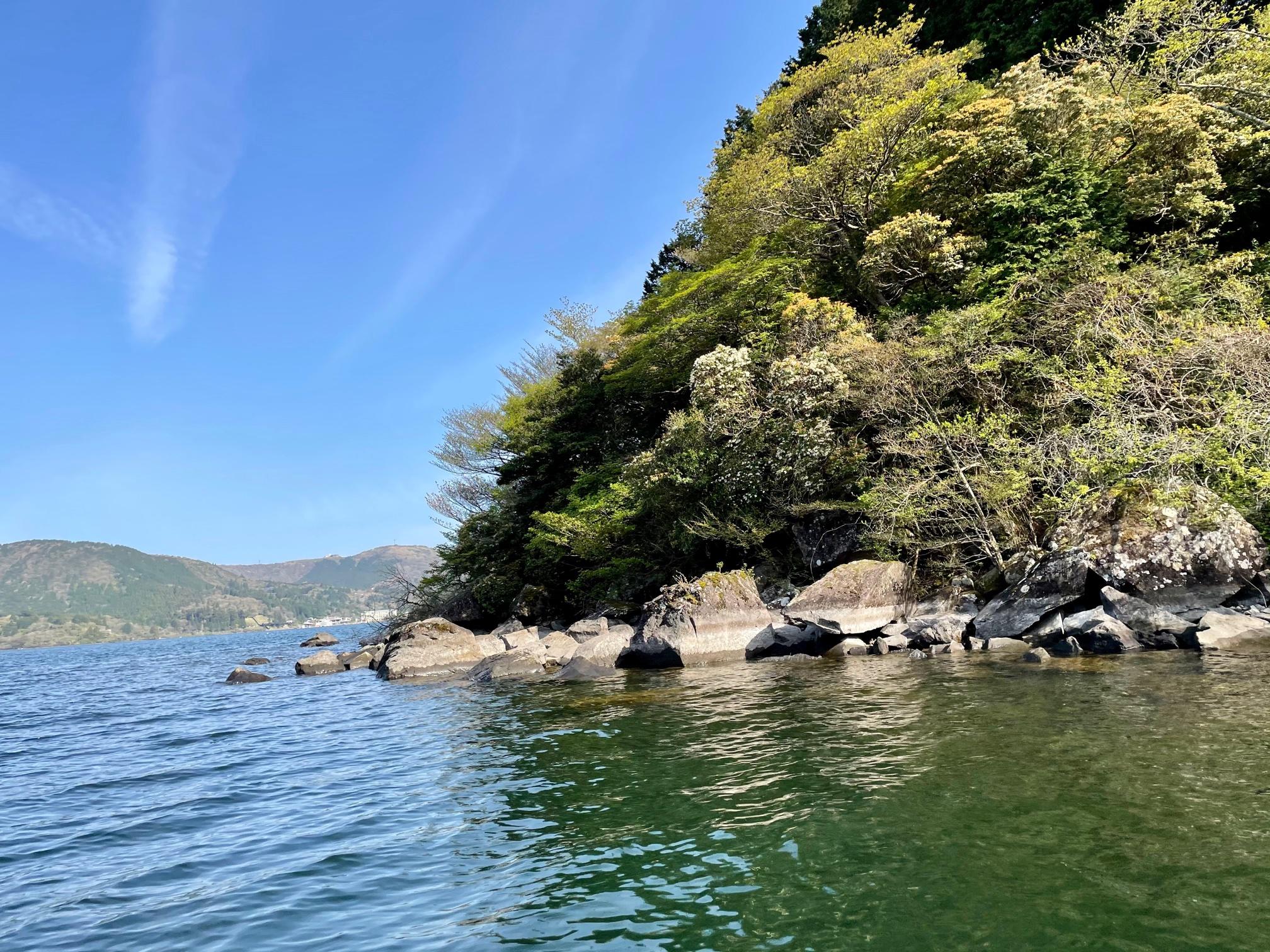 減水した芦ノ湖