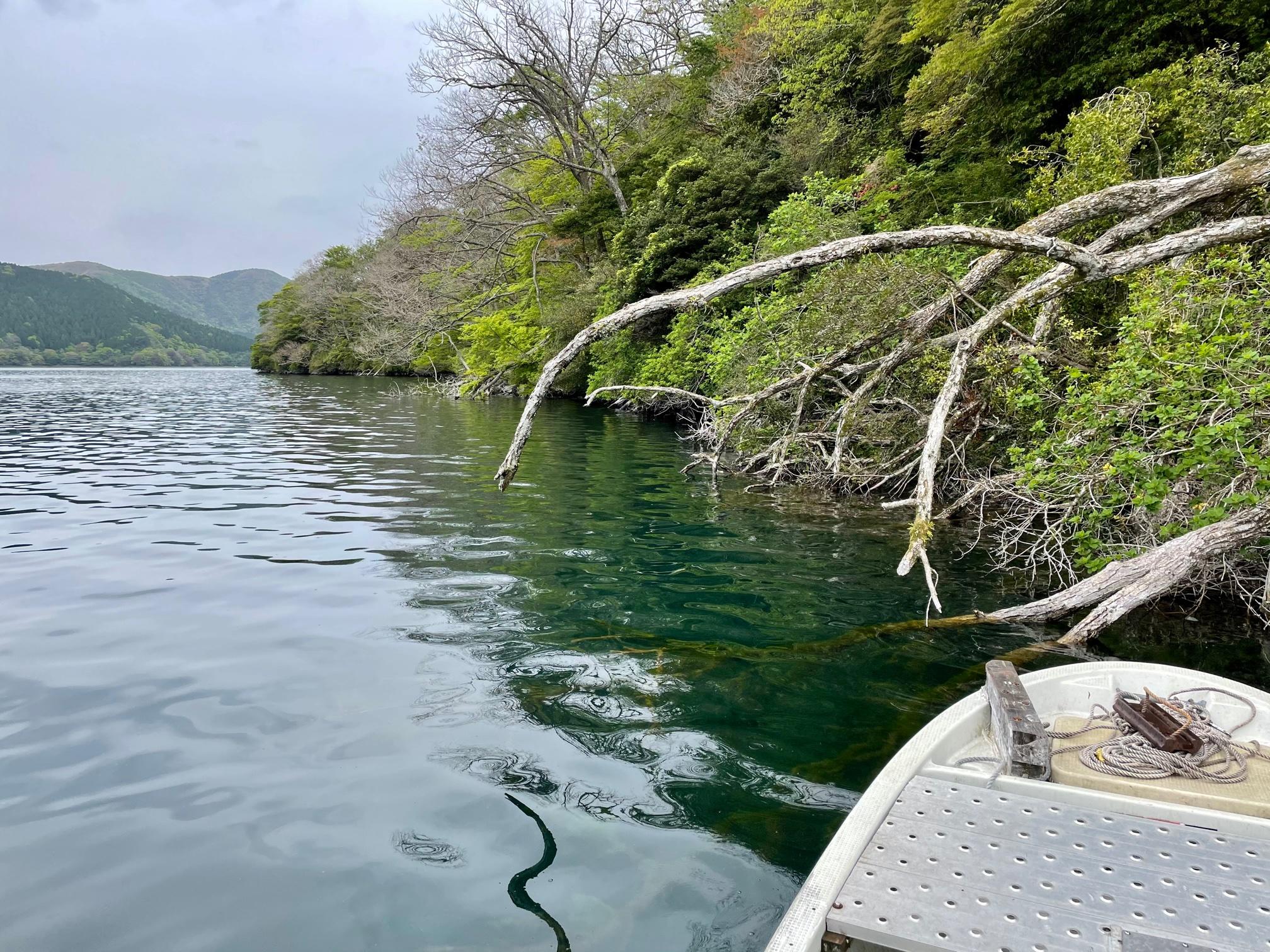 芦ノ湖ボートポイント