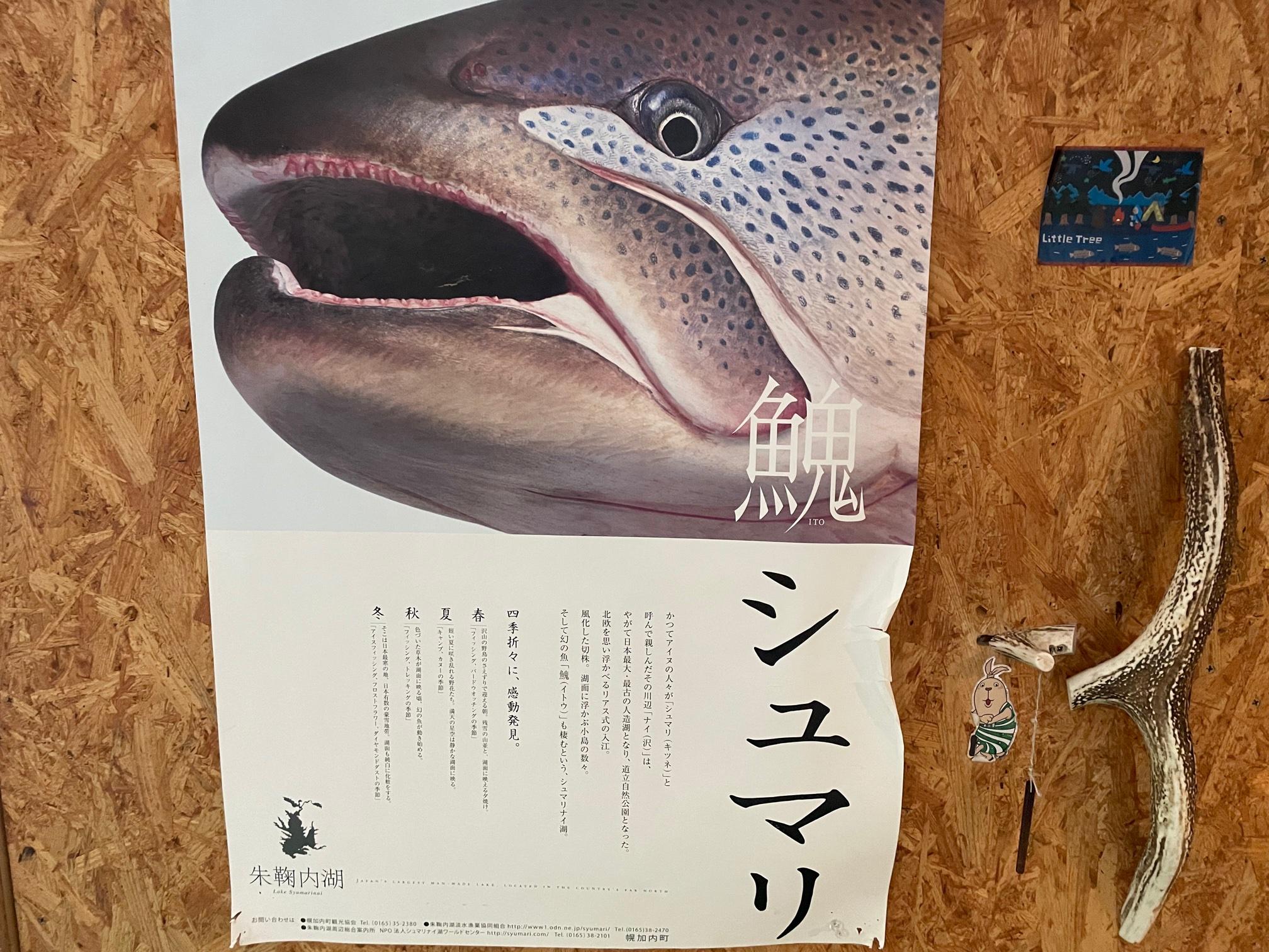 朱鞠内湖イトウポスター