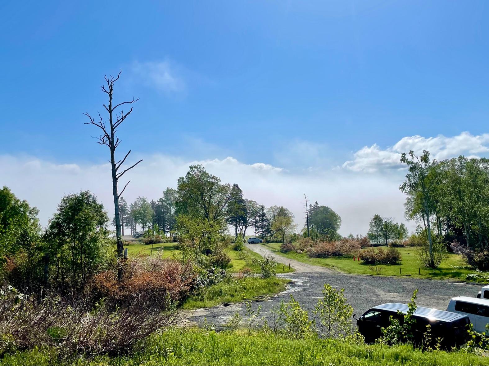 朱鞠内湖の雲海