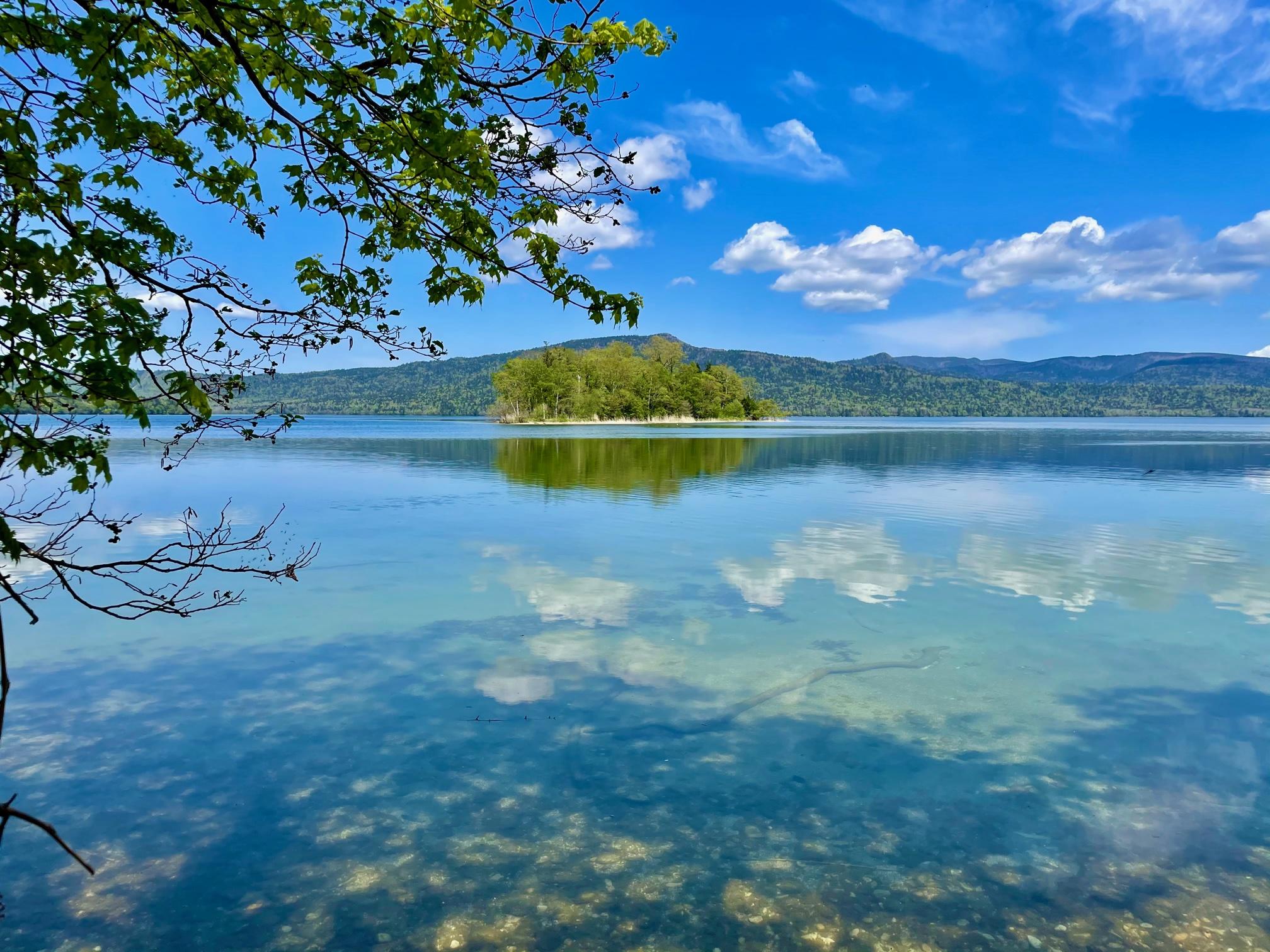 6月の阿寒湖のほとりでくつろごう