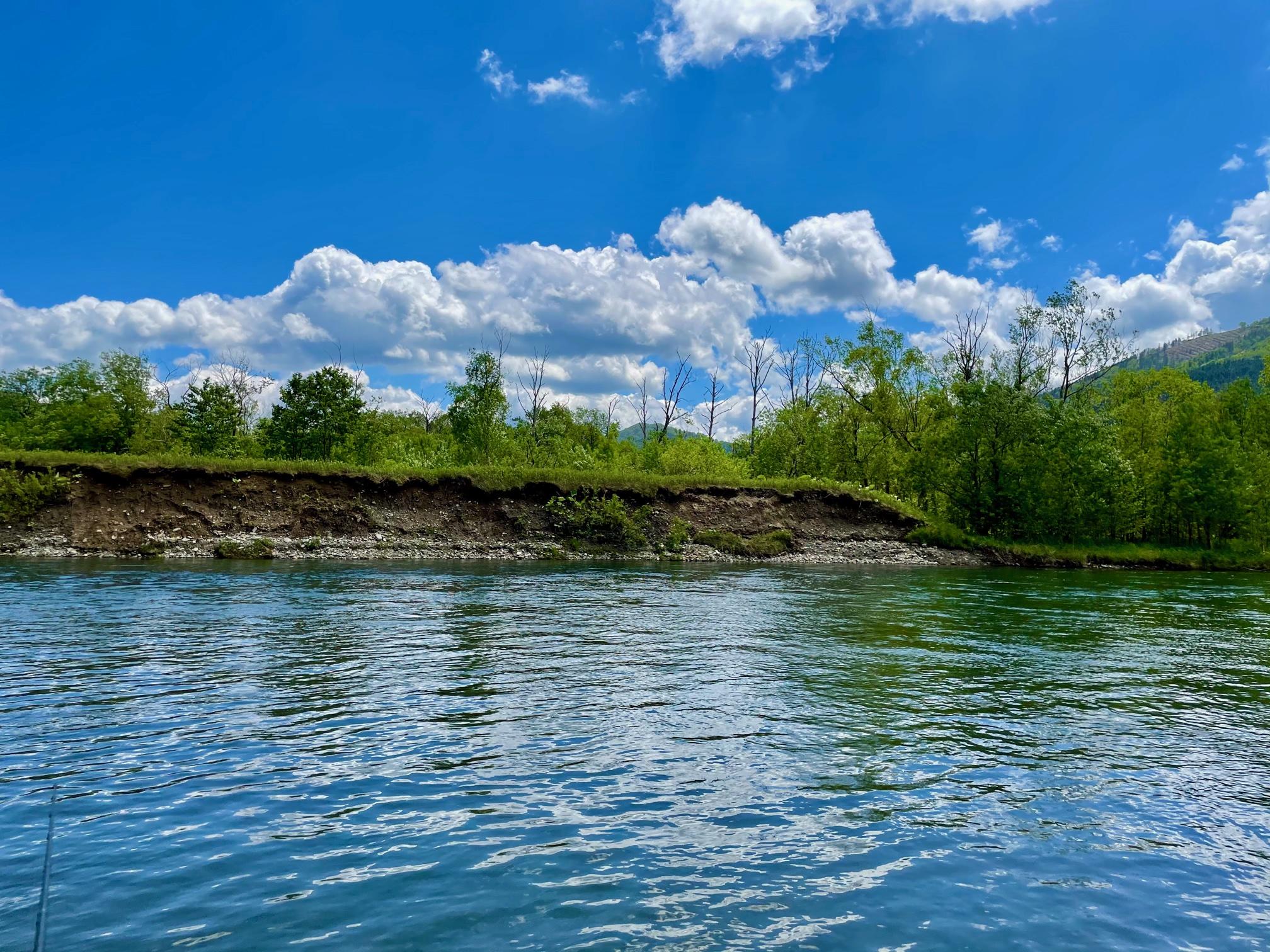 かなやま湖のインレット