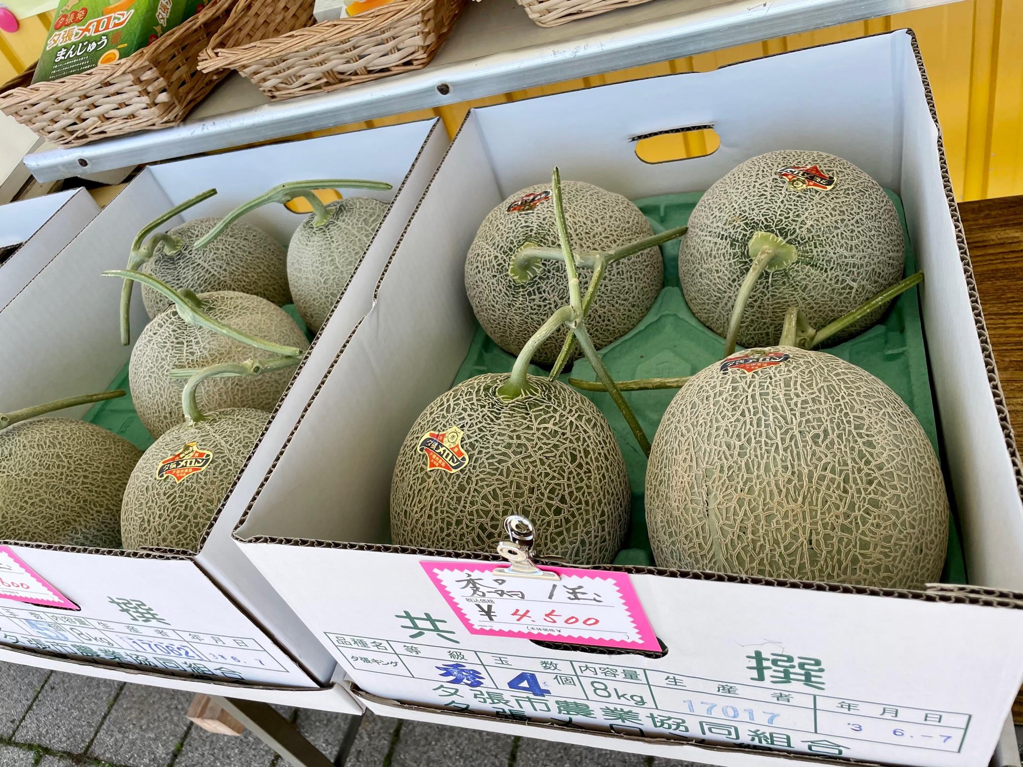 北海道のお土産、メロン