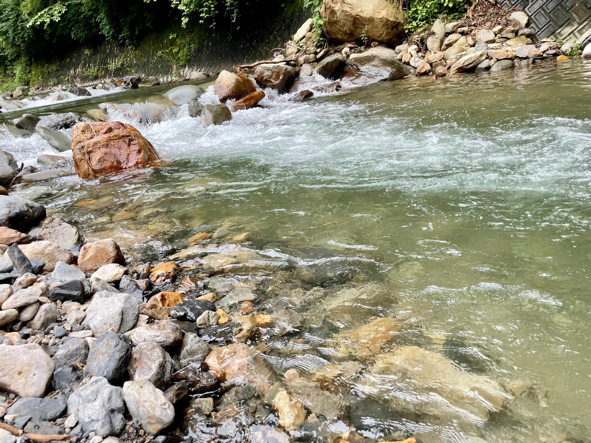 奈良子釣りセンターの渓流